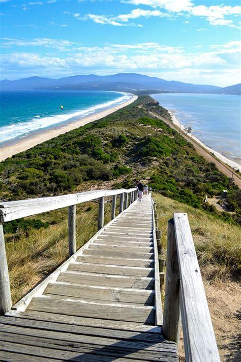 64 Best Images About Tasmania On Pinterest Vineyard