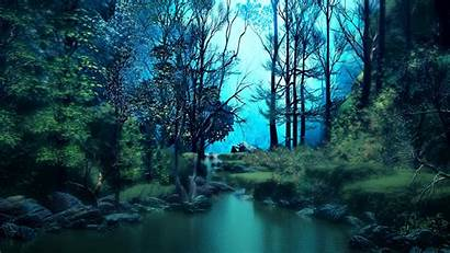 Forest Pond Water Trees Widescreen