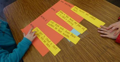 match 600 acryl mat interieur topic sentences students to differentiate which sentences are topic sentences and details