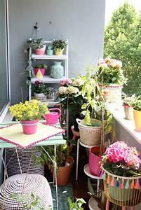 Balkon Ideen Pflanzen : balkon bepflanzen ideen ~ Orissabook.com Haus und Dekorationen