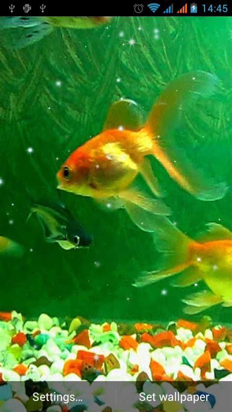 t 233 l 233 chargement gratuit de aquarium fond d 233 cran anim 233 t 233 l 233 chargement android gratuit de