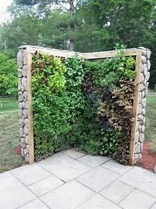 garden, divider