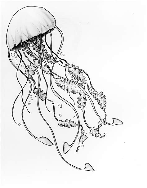 Title Moon Jellyfish Media Copic Marker On Paper Scale