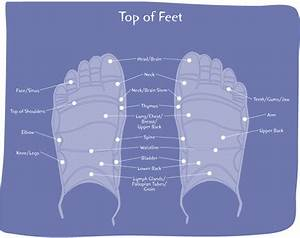 Organ Diagram Foot Pain