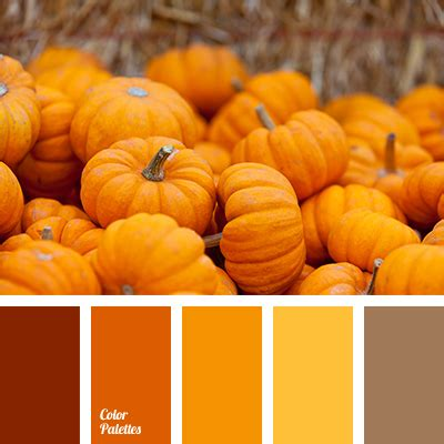 light orange color palette ideas