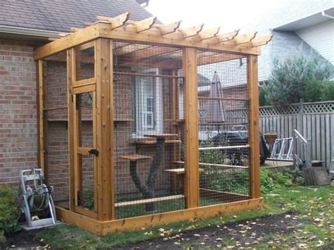 Best 25+ Outdoor Cat Enclosure Ideas On Pinterest