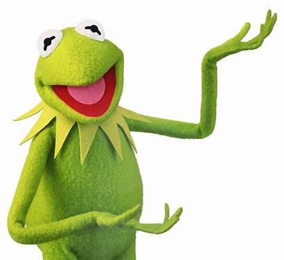 Kermit Choose Pluspng Transparent Searching Form Graphic