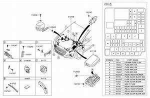 Wiring Diagram 2003 Hyundai Tiburon Gt  Hyundai  Auto Wiring Diagram
