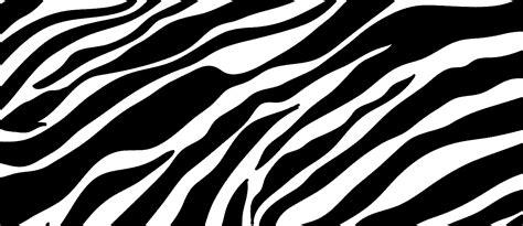 Zebra Print Background Zebra Print Background Lets Skate Orlando