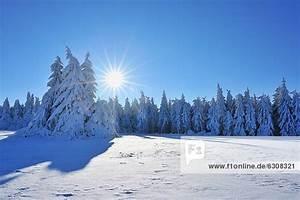 Sonne Im Winter : baum bayern bedecken deutschland nadelbaum schnee ~ Lizthompson.info Haus und Dekorationen