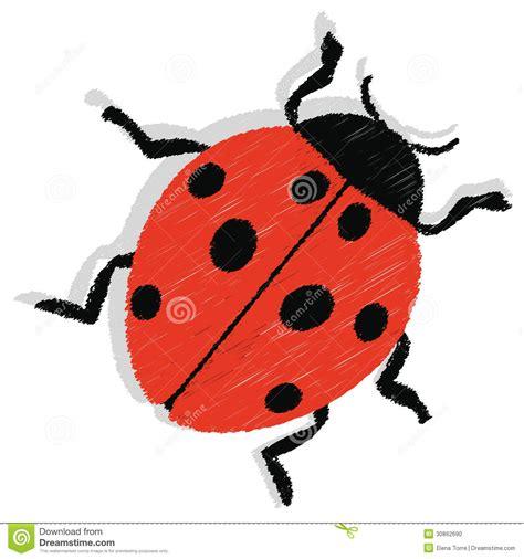 Ladybug Vector Stock Photo  Image 30862690