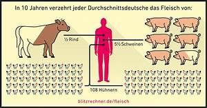 Wieviel Gas Verbraucht Man Im Jahr : weniger fleisch essen darum hilft es der umwelt ~ Lizthompson.info Haus und Dekorationen