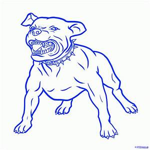 Drawn pit bull easy - Pencil and in color drawn pit bull easy