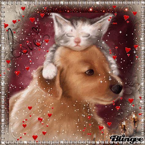 Et Images Chien Et Chat Image 101680421 Blingee