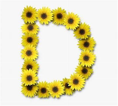 Sunflower Letters Clipart Flower Letra Flores Cartoon
