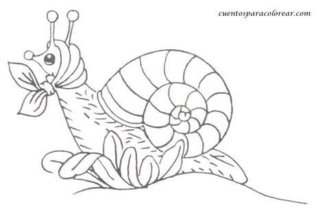 dibujos de caracoles  imprimir  colorear colorear