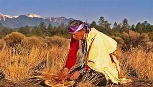 Blumenarten Az Mit Bild : in arizona unterwegs auf den spuren der indianer nord amerika ~ Whattoseeinmadrid.com Haus und Dekorationen