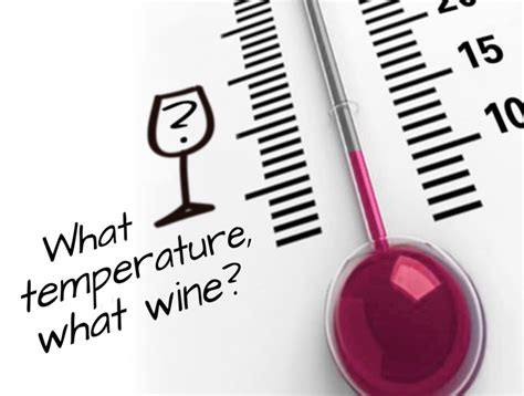 What Temperature Should I Serve My Wine? A Guide