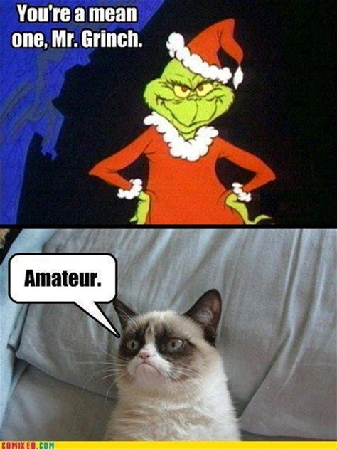 Grumpy Cat Christmas Meme - funny quotes from the grinch quotesgram