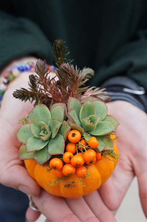 ways   mini pumpkins  decorate  fall