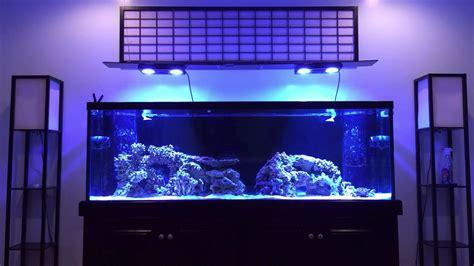 aquascape reef tank how to aquascape a reef tank