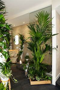 Fausse Plante Verte : les plantes vertes dans la chambre annikapanika ~ Teatrodelosmanantiales.com Idées de Décoration