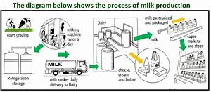 Ielts Writing  Task 1  Flow Charts And Processes  A Step