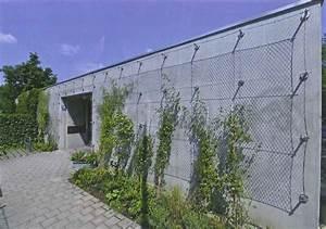 Plantes Grimpantes Mur : support pour mur v g talis tid ~ Melissatoandfro.com Idées de Décoration