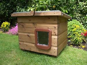 widnes shed With where can i buy a dog house