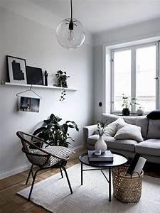 Plante De Salon : d coration de salon pour un int rieur moderne chic et design dld ~ Teatrodelosmanantiales.com Idées de Décoration