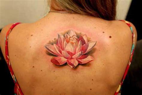 tatuagem de flor de lotus fotos dicas imagens tattoo