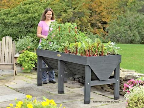 Container Gardening With Vegetables  Getting Started