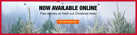 best rated fresh trees delivered to home trees the home depot