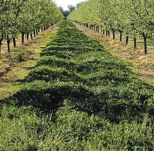 California Climate Smart Ag Initiative Launched