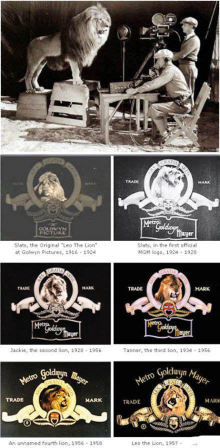 Trade mark of Metro Goldwyn Mayer   Mgm lion, Mgm, Logo evolution