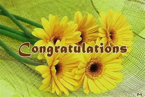 We have put together 30 excellent collection of congratulatory messages for the grand opening of a business. Congratulations Quotes and Wishes for New Business, Good ...