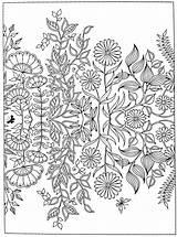 Coloring Garden Secret Pages Adult Getdrawings Print Printable Fnaf Mermaid Peacock Anti Getcolorings Flowers sketch template