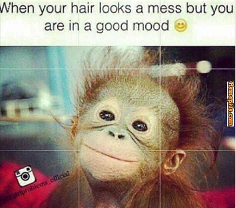 Bad Hair Day Meme - meme bad hair day image memes at relatably com