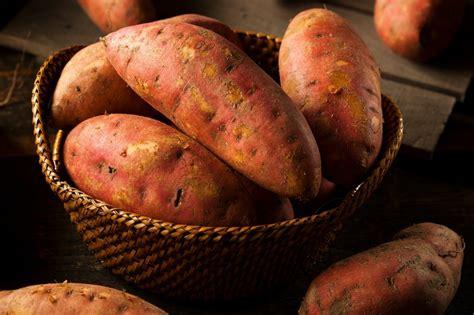 Storing Sweet Potatoes?   ThriftyFun
