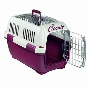 Caisse De Transport Chat Gifi : caisse de transport chien chat personnalise prenom ~ Dailycaller-alerts.com Idées de Décoration