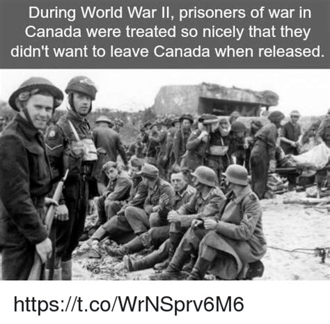 World War 2 Memes - during world war ii prisoners of war in canada were treated so nicely that they didn t want to