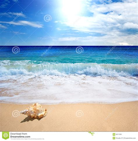 Perfect beach stock image. Image of journey, blue, golden ...
