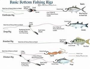 Fishing Rig Diagrams