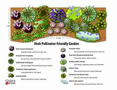 Pollinator Garden Friendly Plan Utah Landscape Landscaping