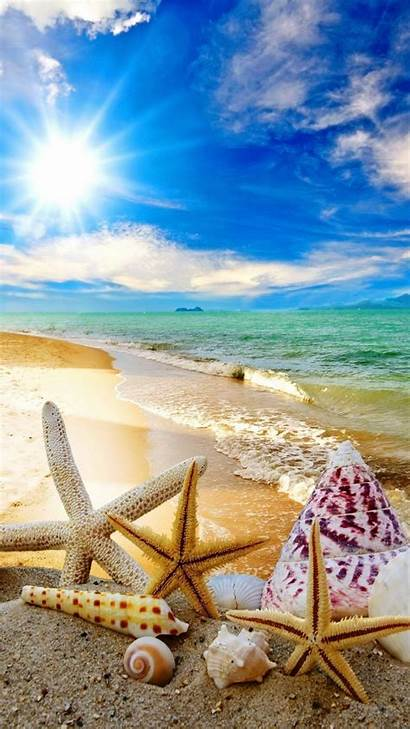Summer Cool Backgrounds Beach Sun Android Starfish