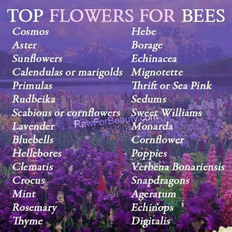 attract bees garden ideas