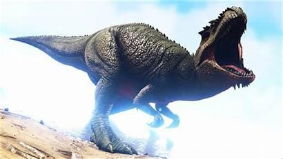 Ark Survival Evolved Background Backgrounds Dinosaur 1920