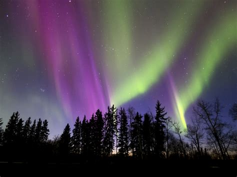 canada northern lights northern lights in canada are stunning from province to