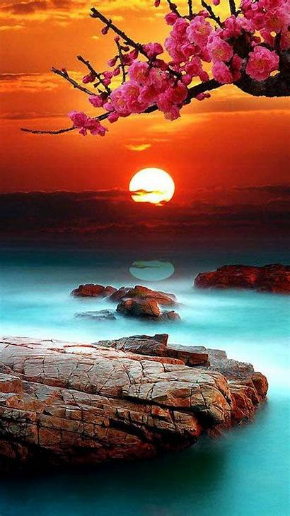 Sunset Iphone Background Mobile Pc Wallpapers Sea
