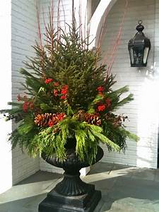 Designing, Home, Creating, Natural, Arrangements, For, Christmas